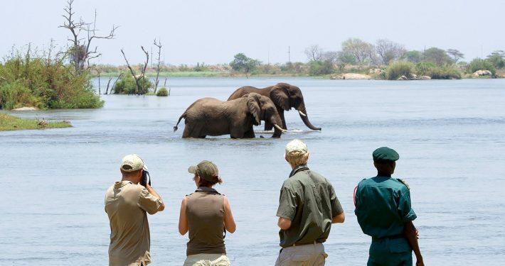 Majete-wildlife-reserve-malawi