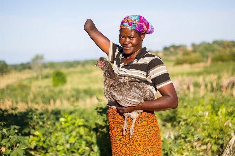 Chickens 4Africa KYEEMA
